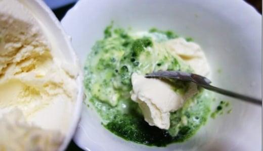 【苦味×甘味】すりおろしゴーヤを使ったゴーヤバニラアイスは、後味さっぱりでクセになる味。