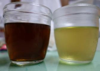 【良薬】ゴーヤの葉でお茶を作ったら、恐ろしい味になった。